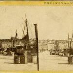 12. Molo Giuseppino, [1910] F8732, 8783, F22852, 22853