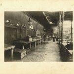 37. Pietro Opiglia, Pescheria vecchia, aprile 1911, F1223,1224, 1225