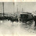 51a. Alta marea in Riva Carciotti, 15 ottobre 1898 F37222